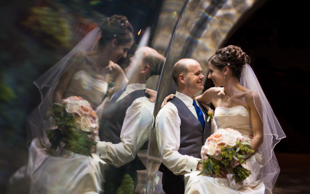 Vibrant Florida Aquarium Wedding | Tampa, Florida