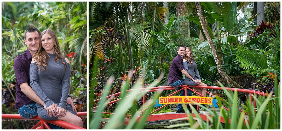 Sunken Gardens, St. Petersburg Engagement Photos, St. Peteresburg Wedding Photographer, Castorina Photography_0007